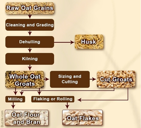 learn-all-about-oatmeal-raw-materials-manufacturing-and-benefits