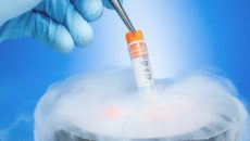 Egg-Freezing-A-Growing-Trend-Among-Young-Female-Professionals