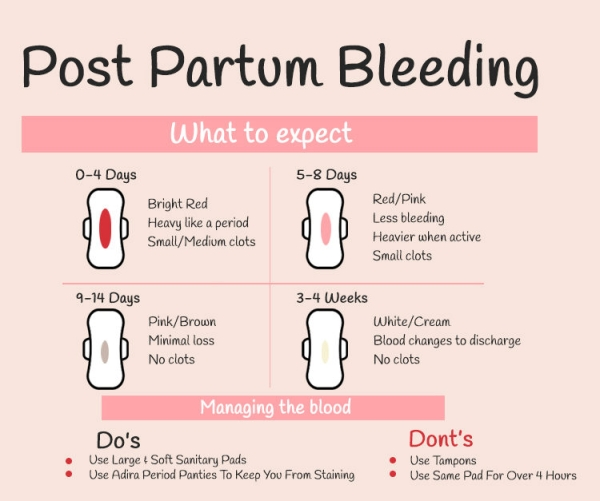 Things to Know About Your Postpartum Body